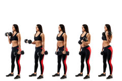 Άσκηση με τους αλτήρες στους δικέφαλους μυς Στοκ Φωτογραφία
