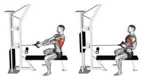 άσκηση Προσομοιωτής φραγμών ώθησης στο κάθισμα στον πάγκο απεικόνιση αποθεμάτων
