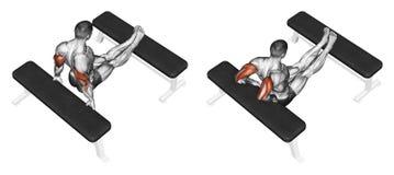 άσκηση Συμπίεση triceps πίσω στον πάγκο Στοκ Φωτογραφίες