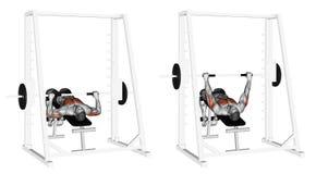 άσκηση Τύπος πάγκων μηχανών Smith πτώσης διανυσματική απεικόνιση