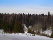 δάσος αθλητικών άνοιξη παιχνιδιού μονοπατιών Στοκ φωτογραφία με δικαίωμα ελεύθερης χρήσης