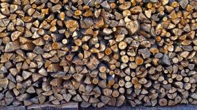 δάσος αποκοπών Στοκ φωτογραφία με δικαίωμα ελεύθερης χρήσης