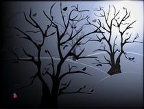 δάσος νύχτας Στοκ εικόνα με δικαίωμα ελεύθερης χρήσης