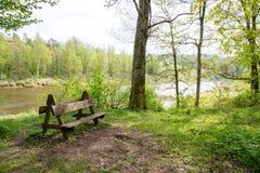 δάσος πάγκων Στοκ φωτογραφία με δικαίωμα ελεύθερης χρήσης