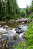 δάσος ποταμών βουνών πτώσε&o στοκ εικόνες με δικαίωμα ελεύθερης χρήσης