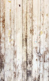 δάσος σύστασης ανασκόπησ Στοκ φωτογραφία με δικαίωμα ελεύθερης χρήσης