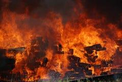δάσος φλογών πυρκαγιάς στρατοπέδευσης Στοκ Εικόνες