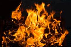 δάσος φλογών πυρκαγιάς στρατοπέδευσης στοκ φωτογραφίες