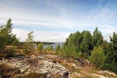 δάσος δύσκολο Στοκ Εικόνες