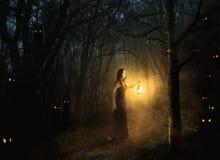 δάσος scary στοκ φωτογραφία