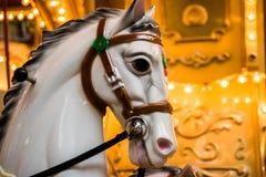 Άσπρα άλογα ιπποδρομίων Στοκ φωτογραφίες με δικαίωμα ελεύθερης χρήσης