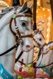 Άσπρα άλογα ιπποδρομίων Στοκ φωτογραφία με δικαίωμα ελεύθερης χρήσης