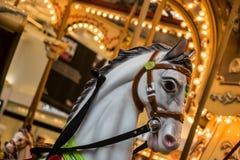 Άσπρα άλογα ιπποδρομίων Στοκ Εικόνα