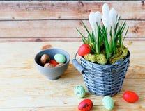 Άσπρα αυγά άνθισης και Πάσχας κρόκων Στοκ Φωτογραφίες