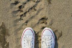 Άσπρα βρώμικα πάνινα παπούτσια με ένα κόκκινο λωρίδα σε ένα αμμώδες θερινό υπόβαθρο Στοκ φωτογραφία με δικαίωμα ελεύθερης χρήσης