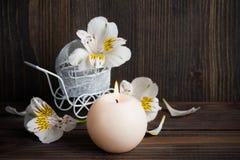 Άσπρα κίτρινα lilly λουλούδια Στοκ φωτογραφία με δικαίωμα ελεύθερης χρήσης