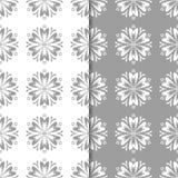 Άσπρα και γκρίζα floral διακοσμητικά σχέδια άνευ ραφής σύνολο προτύπων Στοκ Εικόνες