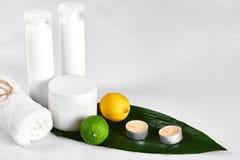 Άσπρα καλλυντικά προϊόντα και πράσινο φύλλο στο άσπρο υπόβαθρο Φυσικά προϊόντα ομορφιάς για το μαρκάρισμα της έννοιας προτύπων Στοκ Φωτογραφίες