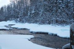 Άσπρα καλυμμένα δέντρα ποταμών πάγου χιονιού χειμερινού κολπίσκου Στοκ Φωτογραφία