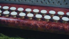 άσπρα κλειδιά της μικρής κινηματογράφησης σε πρώτο πλάνο ακκορντέον, η μετάβαση της κάμερας, απόθεμα βίντεο
