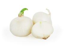 Άσπρα κρεμμύδια στο λευκό Στοκ Εικόνες