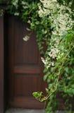 Άσπρα λουλούδια και ξύλινη πόρτα Στοκ φωτογραφίες με δικαίωμα ελεύθερης χρήσης