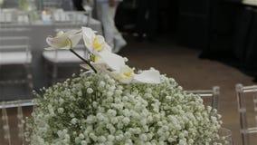 Άσπρα λουλούδια ορχιδεών σχεδίου φιλμ μικρού μήκους
