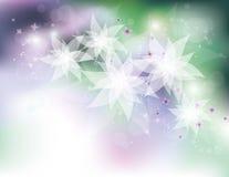 Άσπρα λουλούδια διανυσματική απεικόνιση