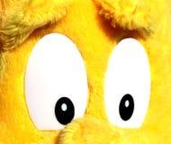 Άσπρα μάτια ενός κίτρινου γεμισμένου ζώου Στοκ Φωτογραφία