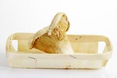 Άσπρα μανιτάρια νεραιδών στο ξύλινο καλάθι Στοκ Φωτογραφίες