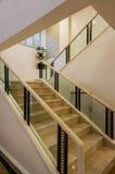 Άσπρα μαρμάρινα σκαλοπάτια και κιγκλίδωμα Στοκ Εικόνες