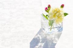 Άσπρα λουλούδια γαρίφαλων στο tranparent γυαλί Στοκ φωτογραφία με δικαίωμα ελεύθερης χρήσης