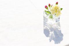 Άσπρα λουλούδια γαρίφαλων στο tranparent γυαλί Στοκ Εικόνες