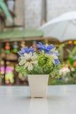 Άσπρα λουλούδια σε ένα άσπρο βάζο σε έναν ξύλινο πίνακα - Εκλεκτής ποιότητας φίλτρο Στοκ Εικόνα