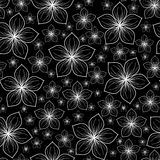 Άσπρα λουλούδια σε ένα μαύρο υπόβαθρο Στοκ Εικόνα