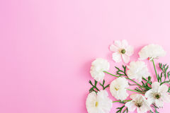 Άσπρα λουλούδια στο ρόδινο υπόβαθρο floral πρότυπο καρδιών λουλουδιών απελευθέρωσης πεταλούδων κίτρινο Επίπεδος βάλτε, τοπ άποψη Στοκ Εικόνες