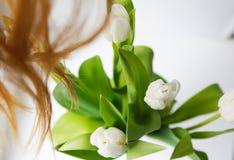Άσπρα λουλούδια τουλιπών σε ένα άσπρο υπόβαθρο Στοκ εικόνες με δικαίωμα ελεύθερης χρήσης
