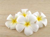 Άσπρα λουλούδια plumeria στο ξύλινο υπόβαθρο πατωμάτων Στοκ φωτογραφία με δικαίωμα ελεύθερης χρήσης