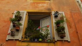 Άσπρα παραθυρόφυλλα δοχείων λουλουδιών συμπαθητικός Γαλλία απόθεμα βίντεο
