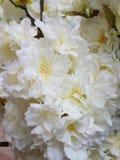 Άσπρα πλαστικά λουλούδια παπαρουνών Στοκ φωτογραφία με δικαίωμα ελεύθερης χρήσης