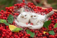 Άσπρα πουλιά κεραμικής αγάπης και μούρα τέφρας βουνών κόκκινος τρύγος ύφους κρίνων απεικόνισης Στοκ φωτογραφία με δικαίωμα ελεύθερης χρήσης