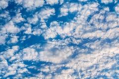 Άσπρα σγουρά σύννεφα σε έναν μπλε ουρανό 1 ανασκόπηση καλύπτει το νεφελώδη ουρανό Στοκ εικόνες με δικαίωμα ελεύθερης χρήσης