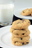 Άσπρα μπισκότα σοκολάτας και των βακκίνιων Στοκ φωτογραφίες με δικαίωμα ελεύθερης χρήσης