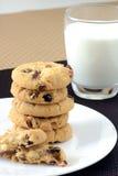 Άσπρα μπισκότα σοκολάτας και των βακκίνιων Στοκ φωτογραφία με δικαίωμα ελεύθερης χρήσης