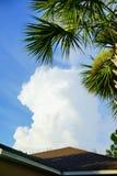 Άσπρα σύννεφο και δέντρο Στοκ φωτογραφία με δικαίωμα ελεύθερης χρήσης
