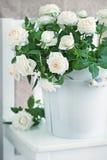 Άσπρα τριαντάφυλλα Στοκ εικόνες με δικαίωμα ελεύθερης χρήσης