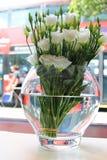 Άσπρα τριαντάφυλλα στο βάζο με το υπόβαθρο λεωφορείων του Λονδίνου Στοκ Φωτογραφία