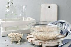 Άσπρα φασόλια που ενυδατώνονται στο νερό σε ένα κύπελλο γυαλιού Στοκ Εικόνα