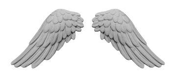 Άσπρα φτερά ασβεστοκονιάματος Στοκ Εικόνα