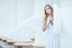 άσπρα φτερά κοριτσιών αγγέλου Στοκ Εικόνες